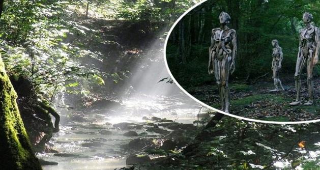 Peserta perkemahan ini tersesat di hutan , terkejut melihat sekumpulan orang yang disangkanya dapat memberikan pertolongan
