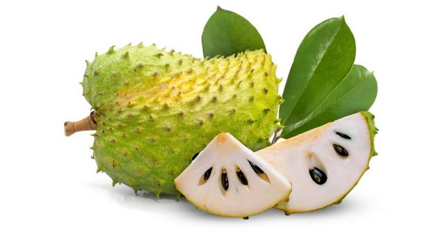 Khasiat Durian Belanda Yang Wajib Anda Tahu